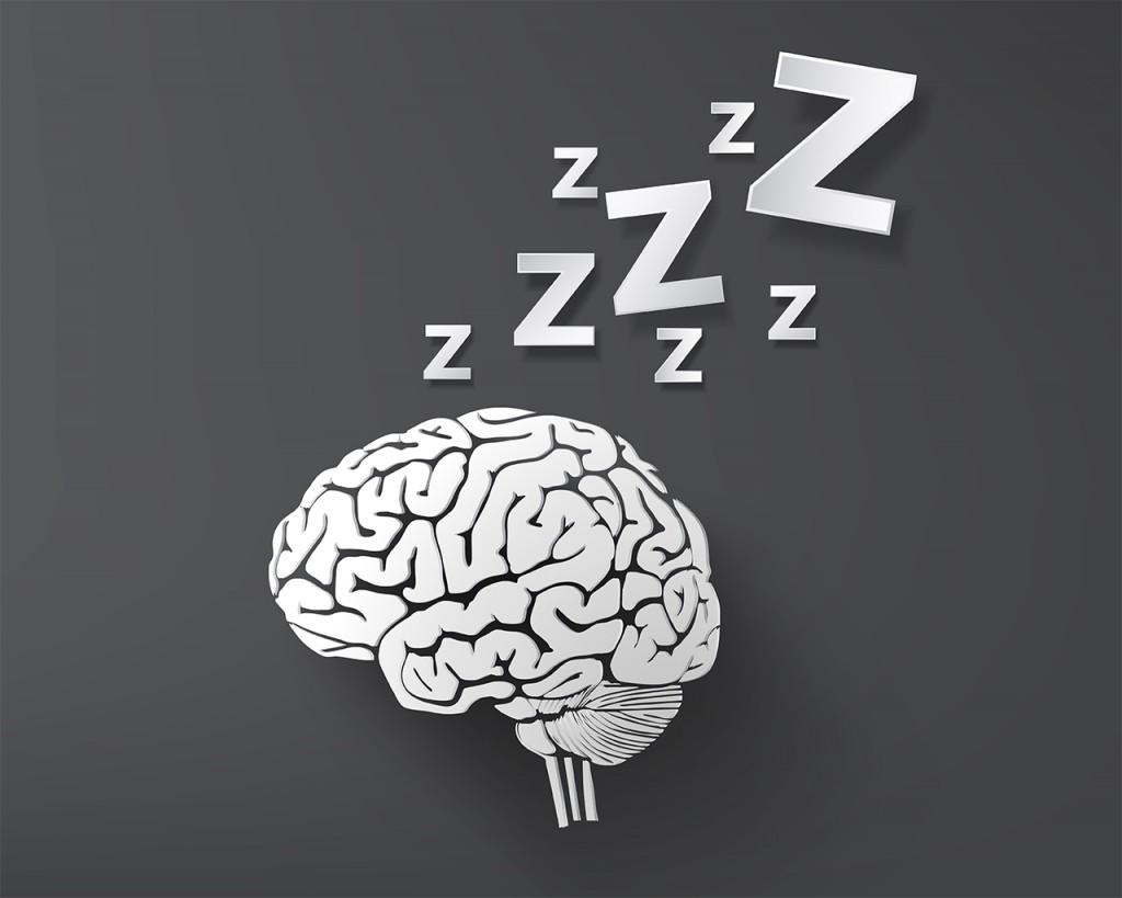 睡眠と脳の関係