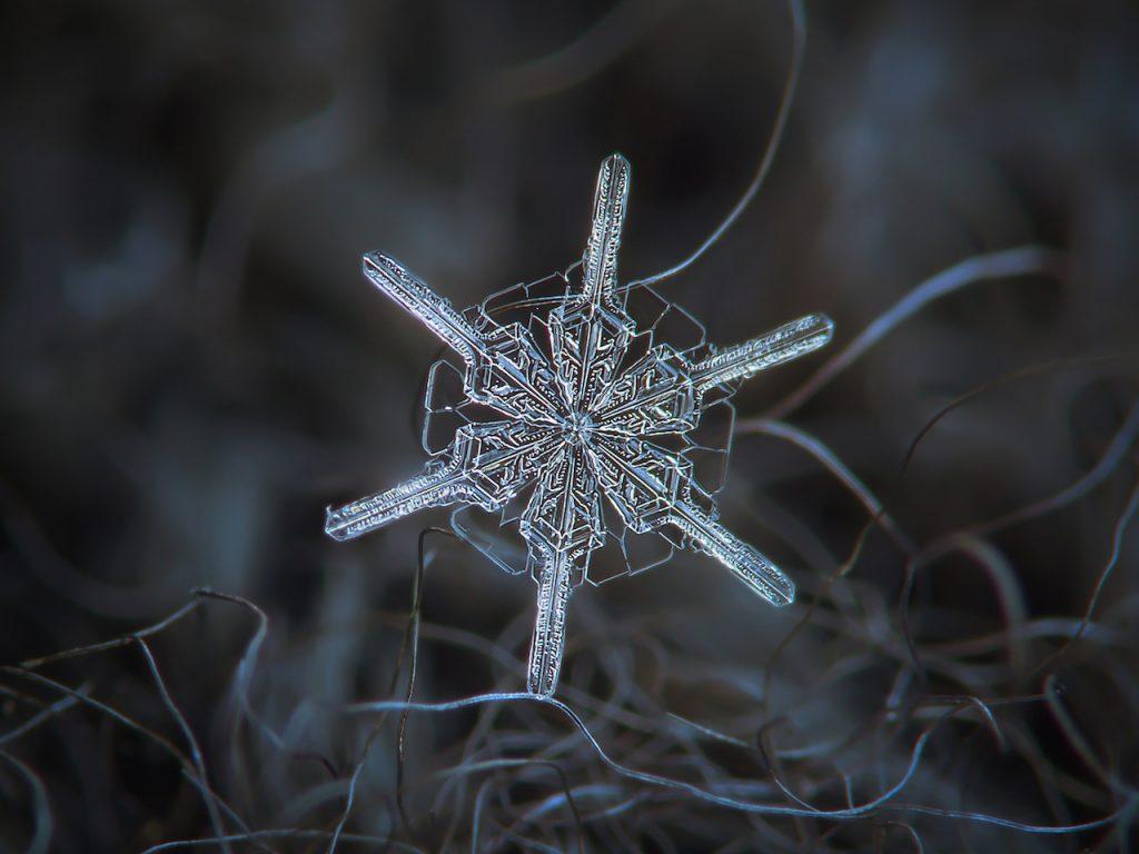 雪の結晶写真