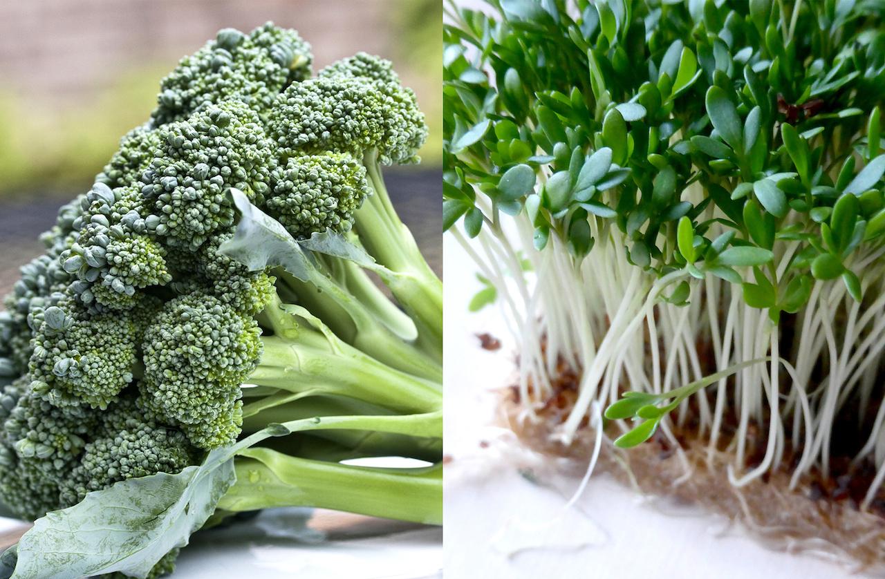 心の病気のための食物学コラム 第8回 新事実!ブロッコリーを食べてうつ予防
