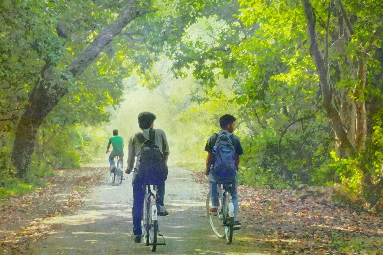 「運動」とメンタルヘルス「心のための運動学」 心に働く運動:サイクリング