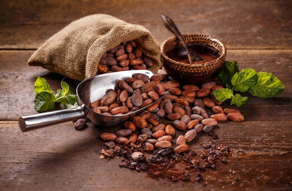 心の病気のための食物学コラム 第11回 うつ病とチョコレート
